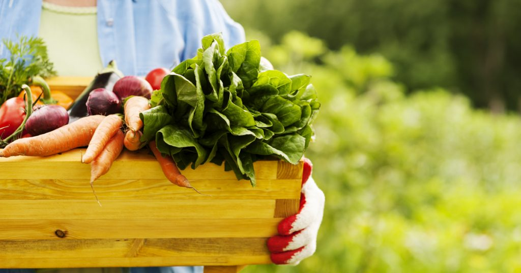 Woman holding a box of vegetables from her garden