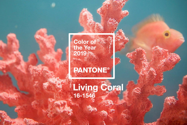 Living Coral is Pantone's 2019 Color of the Year
