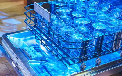 The Entertainer's Dream Dishwasher